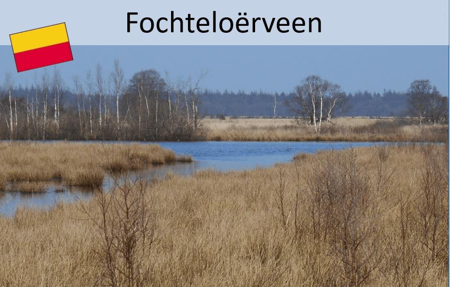Drenthepad;  Fochteloërveen